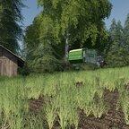 Deutz DX 4.71 beim Gras fahren