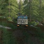 Teil 11 Ab durch den Wald