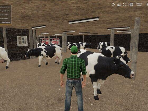 Mit den angepassten Kühen, sehen die Ställe gleich noch besser aus