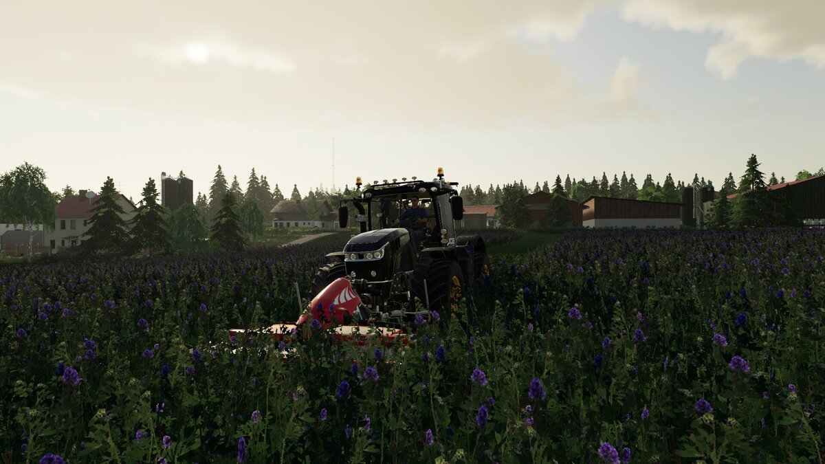 Luzerne in Ellerbach kann gemäht werden