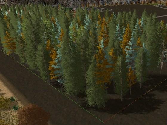 bäume setzten