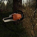 Nächsten Bäume werden gefällt und zu geschnitten