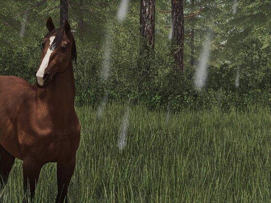 Pferdinand, der Schwachkopp :D