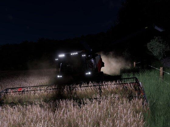 Nachtschicht auf der Wiese
