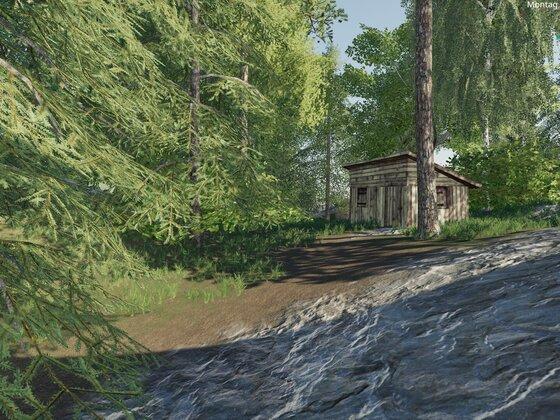 Mischwälder sind schön...