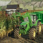 Mais dreschen bei der Agrar GmbH Felsbrunn