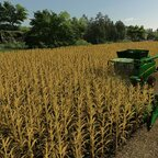 den neuen Maispflücker testen