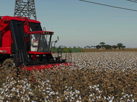 Baumwollernte in Western AussieLand