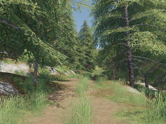 Teil 28 Der Wald Ruft